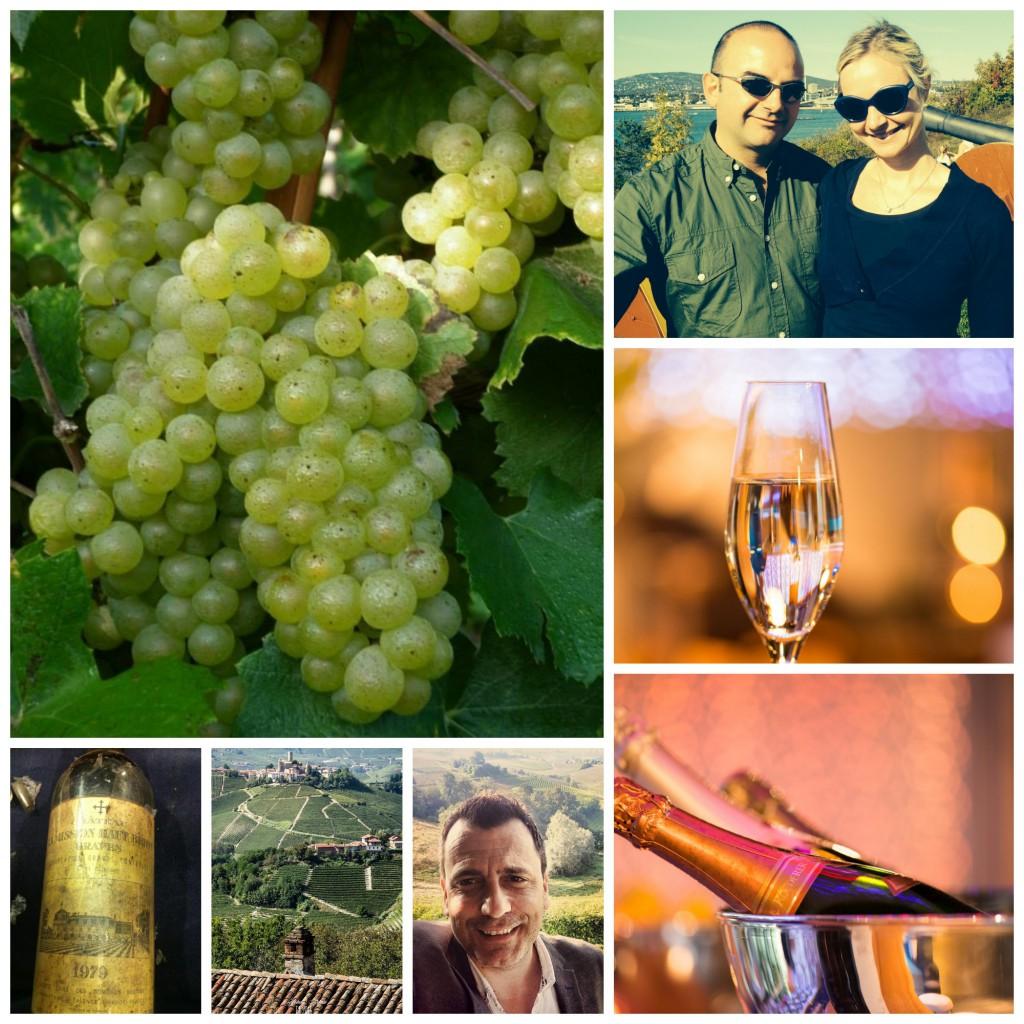 Vinsmaking 3
